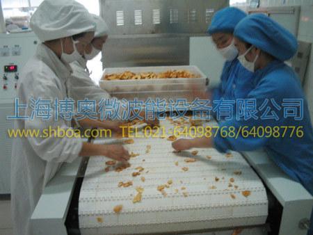 微波坚果烘烤设备案例-干果及坚果类