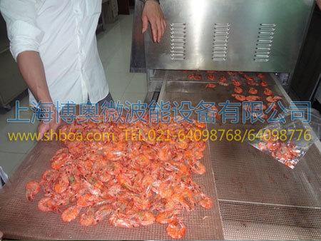 食品微波膨化设备膨化鱼片实例